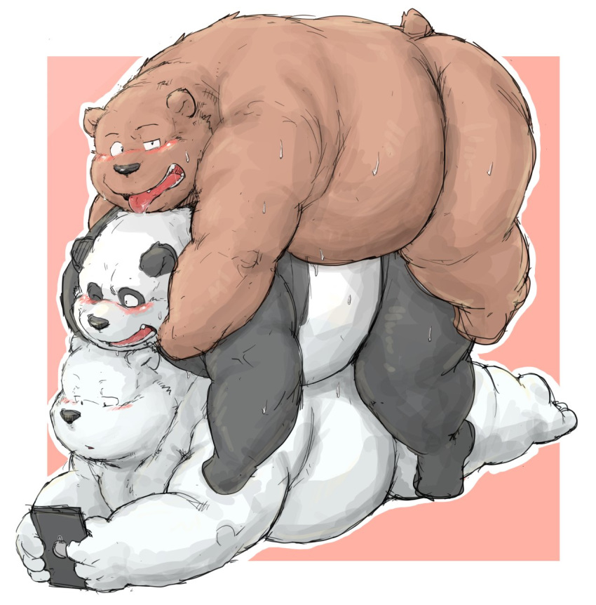 bear we bears The amazing world of gumball tina